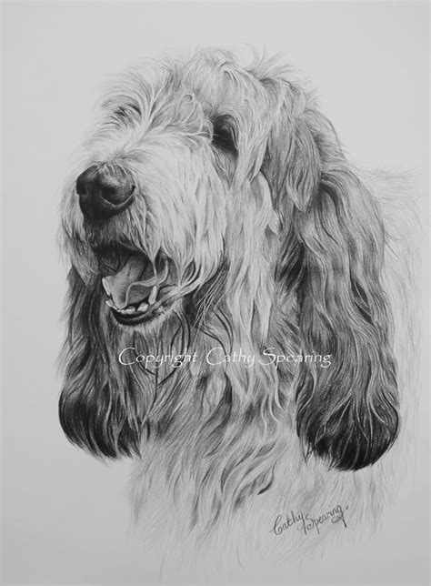 Cathy Spearing - Equestrian and animal artist