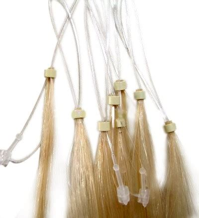 LuckyLady: Extensions!