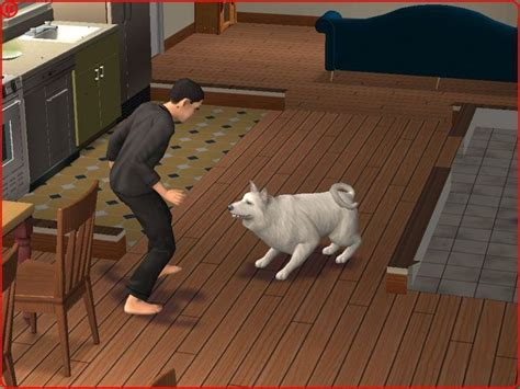 The Sims 2: Pets screenshots | Hooked Gamers
