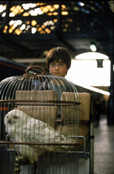 101 thoughts we had while watching Philosopher's Stone