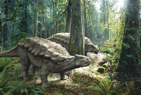Love in the Time of Chasmosaurs: Book Review: Tales of