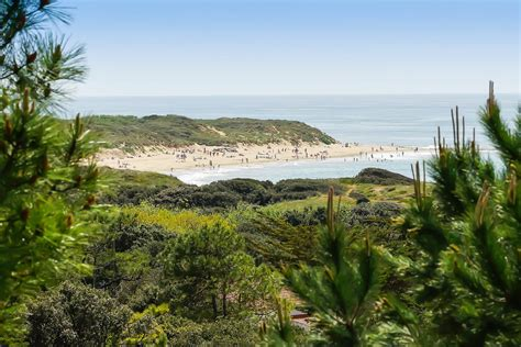 Camping L Anse des Pins 4 Location Charente Maritime 17