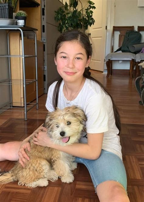 Alysa Liu Height, Weight, Age, Family, Facts, Education