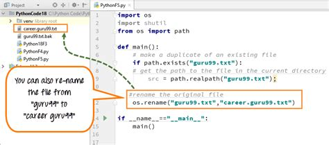 Python Rename File and Directory using os