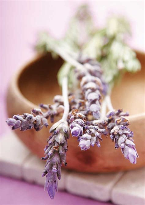 Make Lavender Spa Products